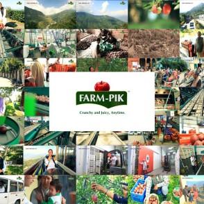 Farm-Pik